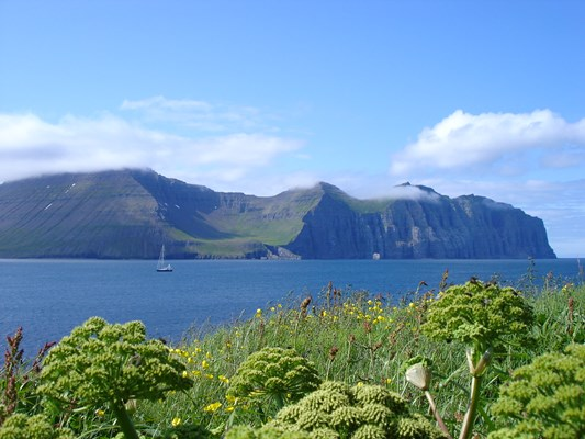 Hælavíkurbjarg cliff, seen from Hornvík.JPG